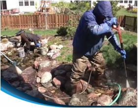 Professional POND cleaning & maintenance
