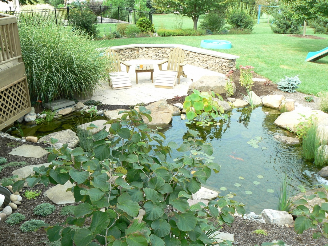 fish u0026 koi pond contractor central pa lebanon harrisburg